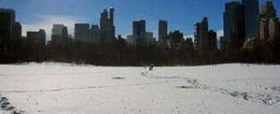Average Temperatures in New York
