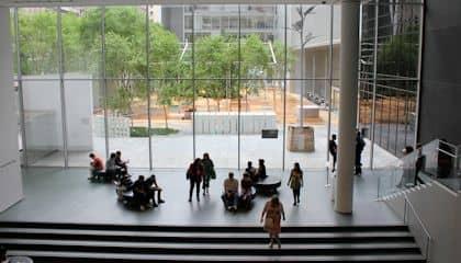 MoMA Museum of Modern Art - Garden