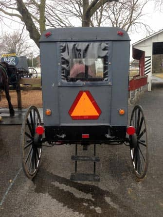 Philadelphia and Amish Country Trip - Amish Buggy