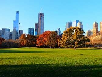 Central Park - Sheep Meadow Autumn