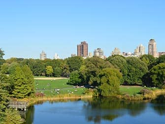 Central Park in New York - Great Lawn