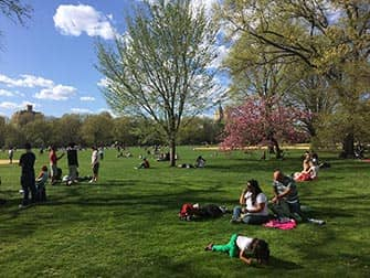 Central Park in New York - People at Great Lawn